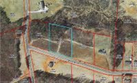 Home for sale: 00 Bryant Mill Rd., Ararat, NC 27007