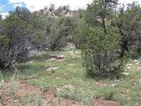 Home for sale: 0 Lot 2 Pinto Trail, Corona, NM 88318