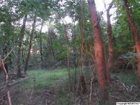 Home for sale: 0 Green Mountain Rd., Huntsville, AL 35803