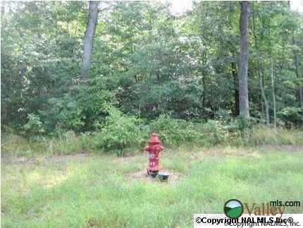1 County Rd. 935, Mentone, AL 35984 Photo 7