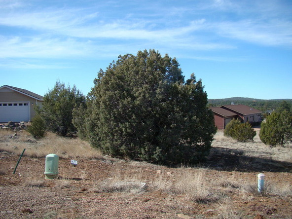 660 S. Rockridge Dr., Show Low, AZ 85901 Photo 6