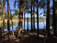 Home for sale: 0 Rocky Creek (B) Cir., Leesville, SC 29070