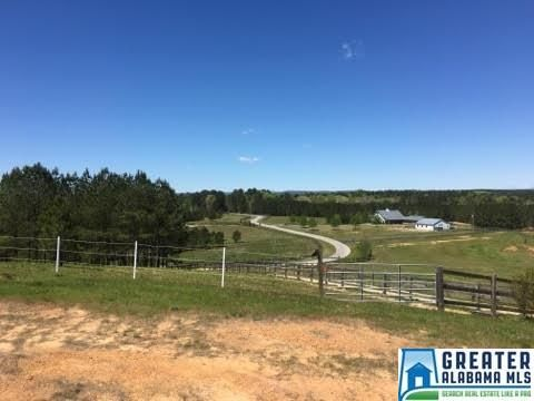 169 Shire Valley Rd., Chelsea, AL 35051 Photo 13