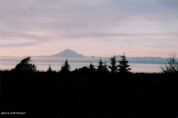 37401 Cannery Rd., Homer, AK 99611 Photo 2
