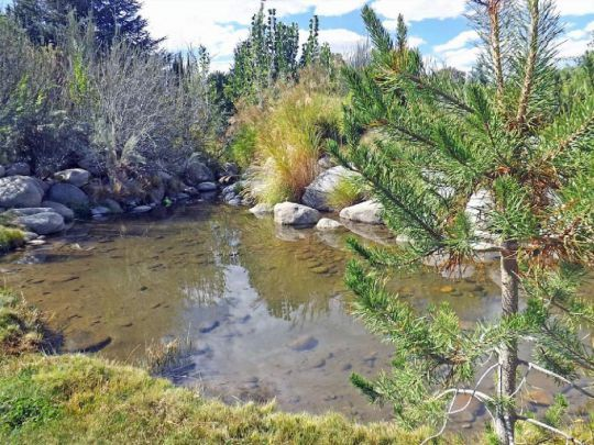 800 S. Barlow Ln., Bishop, CA 93514 Photo 40