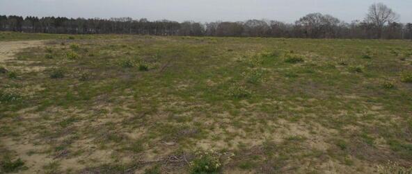 7 Acres Hardy Rd., Rehobeth, AL 36301 Photo 20