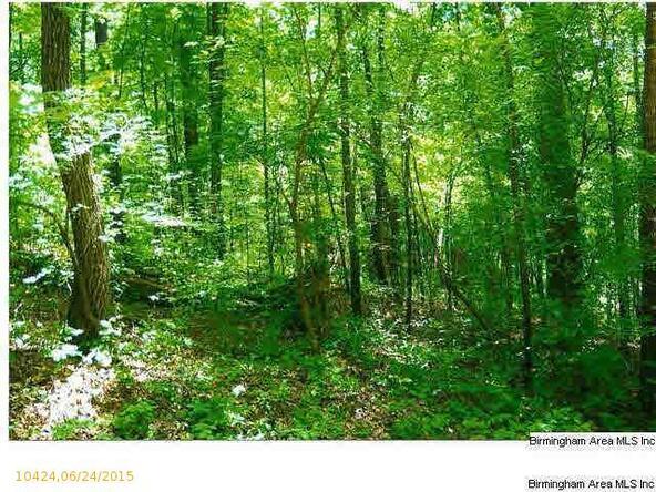 384 Lakeview Crest Dr., Pell City, AL 35128 Photo 1