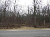 Home for sale: Ormes Rd., Vassar, MI 48768