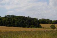 Home for sale: Lot 7 Heatherstone Ridge, Sun Prairie, WI 53590