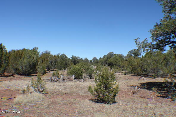 8 Acres Off Of Acr N. 3114, Vernon, AZ 85940 Photo 2