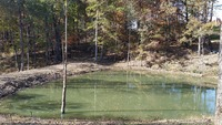 Home for sale: 8 Liberty Rd. - Lot#8, Fairview, TN 37062