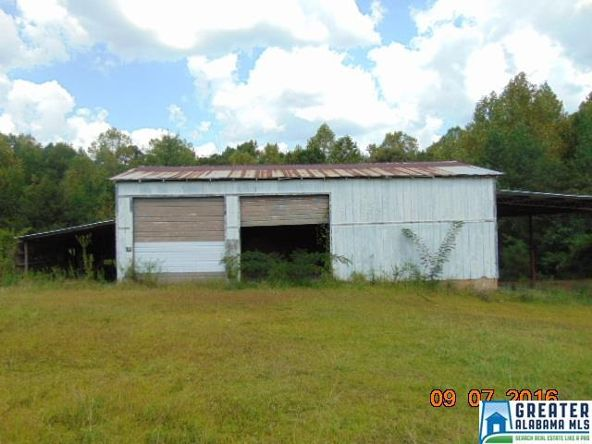 3701 Co Rd. 32, Clanton, AL 35045 Photo 1