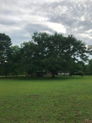 1158 Mccoy, Cottonwood, AL 36320 Photo 6