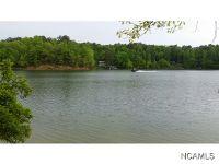 Home for sale: Co Rd. 920, Crane Hill, AL 35053