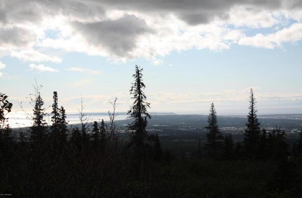 1231 Sultana Ct., Anchorage, AK 99516 Photo 38
