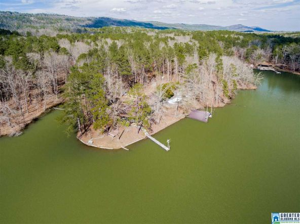 166 Timberland Way, Vandiver, AL 35176 Photo 31