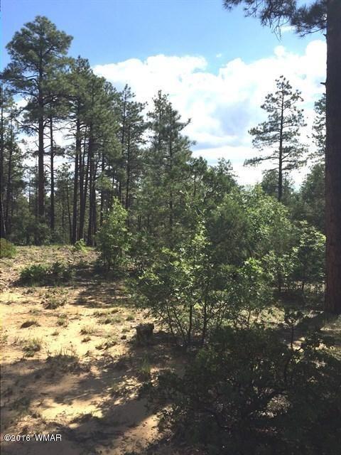 1875 S. Pleasant View Dr., Show Low, AZ 85901 Photo 7