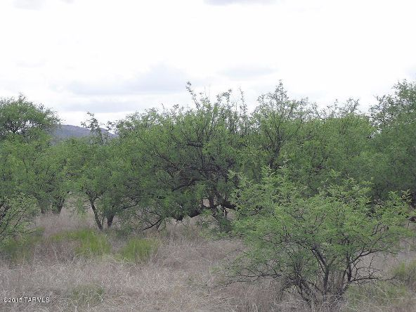 16005 Ranger Rd., Arivaca, AZ 85601 Photo 6