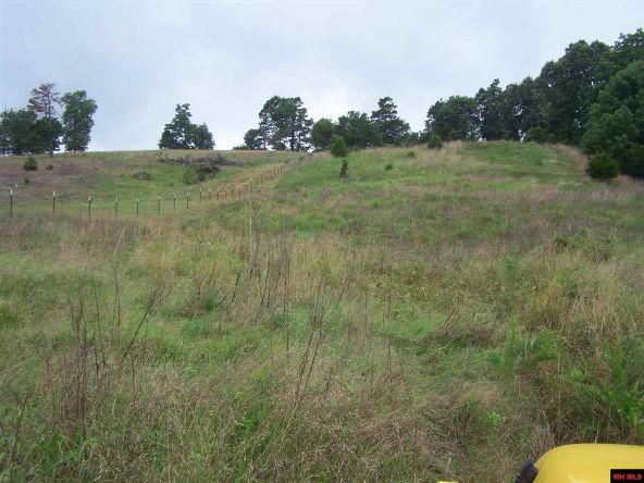 2000 Cedar Park Rd., Viola, AR 72583 Photo 10