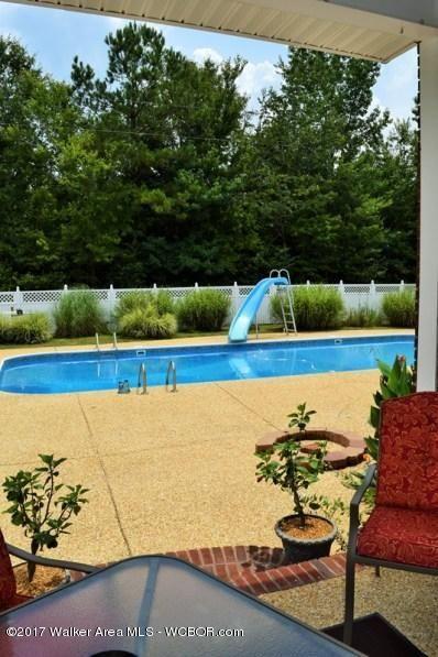 320 Woods Creek, Hamilton, AL 35570 Photo 49