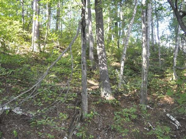 Lot 12 Sunset Dr., Tomahawk, WI 54487 Photo 30