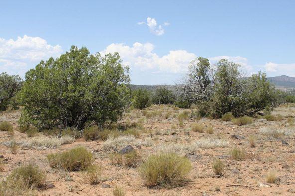 3 Stockman, Ash Fork, AZ 86320 Photo 2