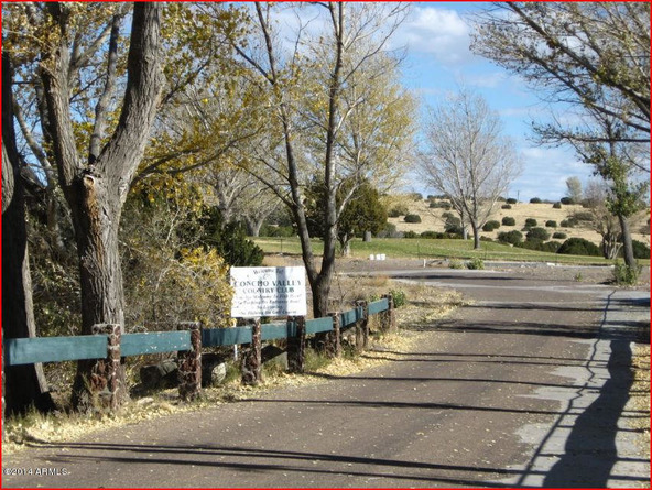 40 Cr 5089 --, Concho, AZ 85924 Photo 4
