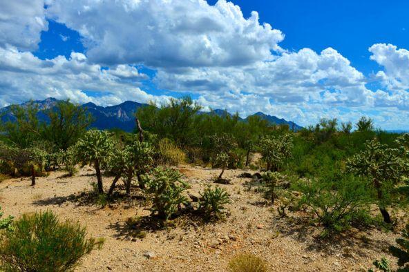 14601 N. Quiet Rain Dr., Oro Valley, AZ 85755 Photo 12