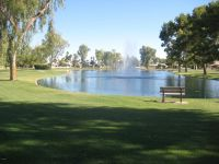 Home for sale: 25813 S. Sherbrook Dr., Sun Lakes, AZ 85248