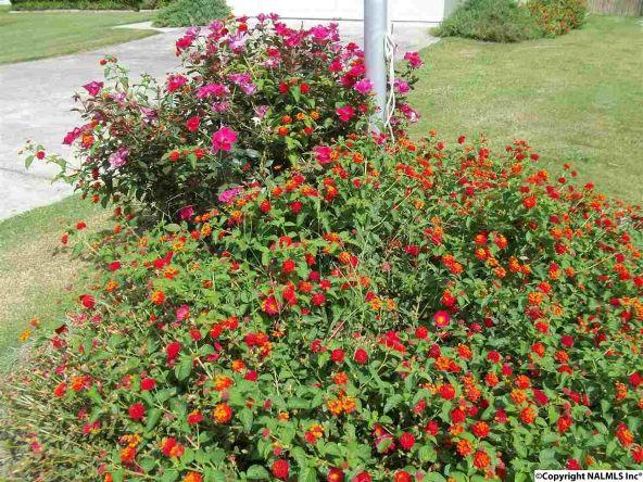 4237 Lakecrest Dr., Guntersville, AL 35976 Photo 18