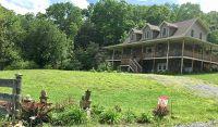 Home for sale: 327 Rayford Ln., Bastian, VA 24314