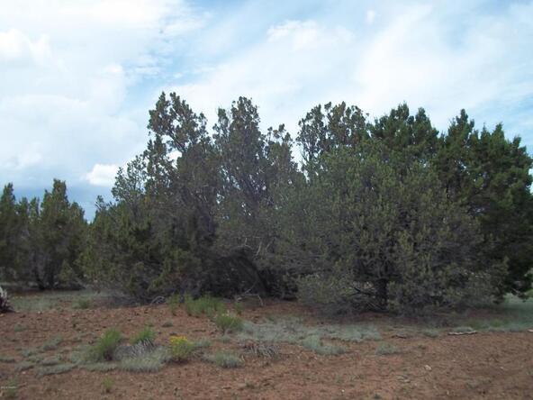 1142,70 E. Alimos Way, Williams, AZ 86046 Photo 4