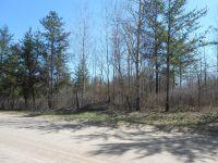 Home for sale: Schroeder N.W. Rd., Bemidji, MN 56601