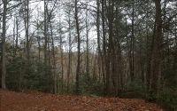 Home for sale: Tr 1 Lt G Staurolite, Brasstown, NC 28902
