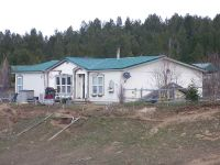 Home for sale: 112 Skidoo Pl., Cascade, ID 83611