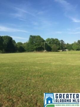 400 Huff Ln., Springville, AL 35146 Photo 5