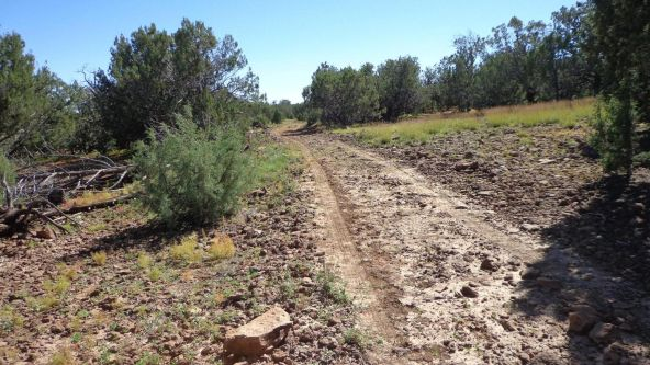 514 Westwood Ranch Lot 514, Seligman, AZ 86337 Photo 18
