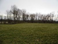 Home for sale: Lot 2 County Rd. 950 W., Mulberry, IN 46058