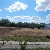 Home for sale: Tbd Susie Ln., Springerville, AZ 85938