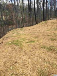 Home for sale: 834 Red Fox Trail, Gatlinburg, TN 37738