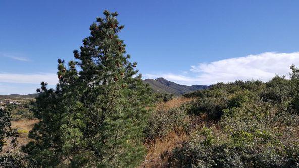 1414 N. Split Rail Trail, Prescott Valley, AZ 86314 Photo 43