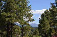 Home for sale: 830 Coronado, Pagosa Springs, CO 81147