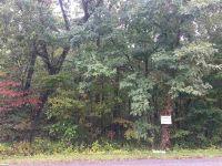Home for sale: 284 Back Creek Ln., Sherando, VA 22952