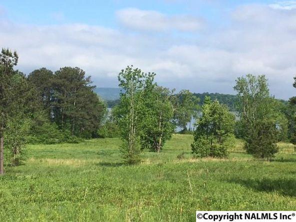 1 County Rd. 67, Langston, AL 35755 Photo 8