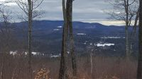 Home for sale: Lot 44 Meadow Rd., Newbury, NH 03255