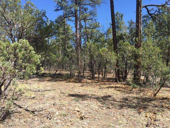 790 W. Pine Spruce Ln., Pinetop, AZ 85935 Photo 9