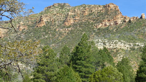 220 W. Zane Grey Cir., Christopher Creek, AZ 85541 Photo 55