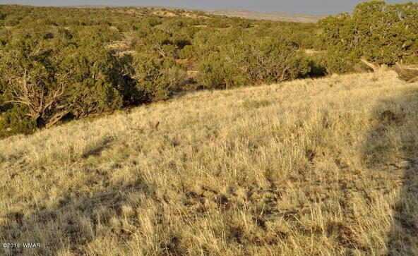 297 Woodridge Ranch, Concho, AZ 85924 Photo 20