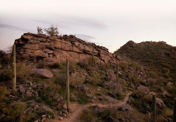 7300 W. Cactus Flower Pass, Marana, AZ 85658 Photo 11
