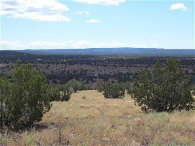 204 Juniperwood Rnch Un 3 Lot 204, Ash Fork, AZ 86320 Photo 3